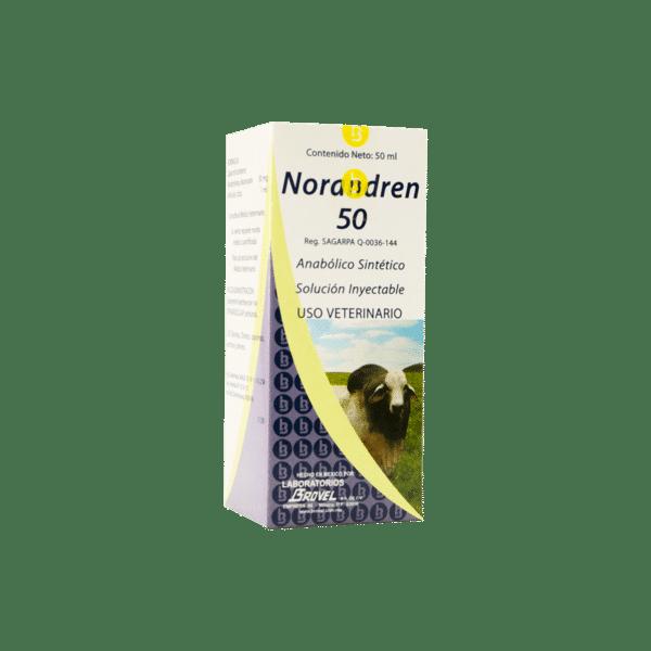NORANDREN-50-Brovel-Nucleus
